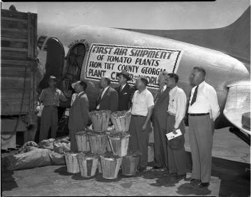 Delta Cargo tomato shipments.