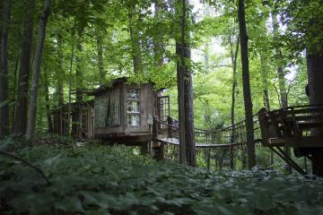 Airbnb_Treehouse